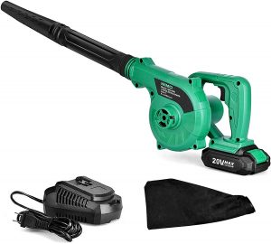 Cordless Leaf Blower for Blowing Leaf