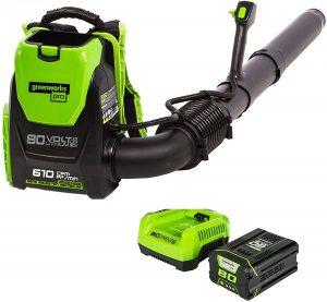Greenworks Pro Cordless Backpack Leaf Blower